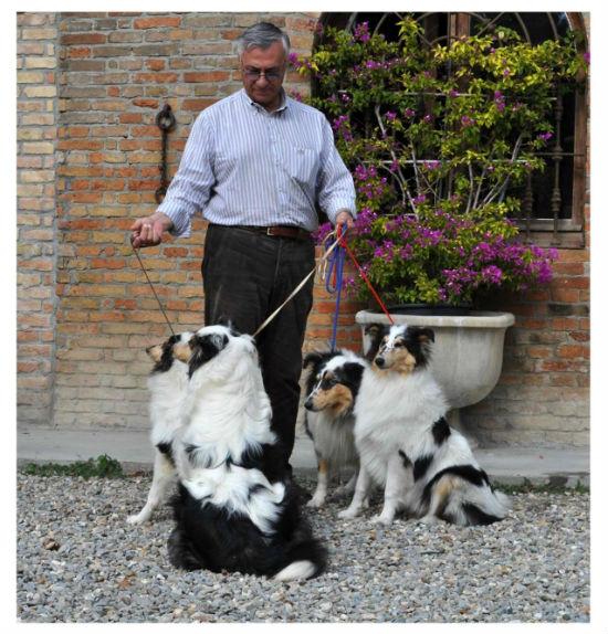 L. Rocco with M.P Bordone`s harlequin puppies - 2012